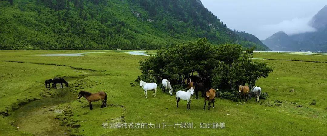 摩旅纪录片《探秘西藏》完整版发布,新的一年愿你丈量梦想,步履不停-第20张图片-春风行摩托车之家