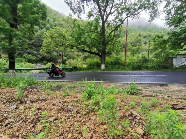 雨中穿黄山—CBF190X 1200公里摩游记2-第24张图片-春风行摩托车之家